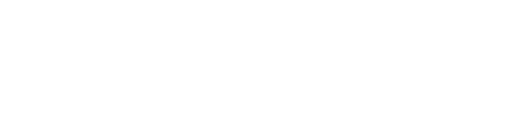 HubSpot Solution Partner Logo